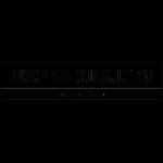 LOGO-INSOMNIA-CONSULTING-inver